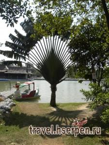 Путевые и непутевые заметки о Таиланде