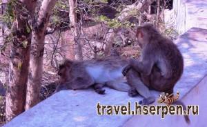 Достопримечательности Бали: вулканы, пещеры, парки и храмы