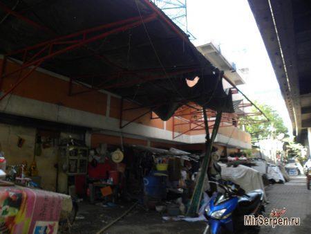 Нетуристический Бангкок: жизнь под хайвеем