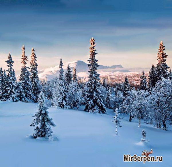 Зимний отдых в сказочной Финляндии
