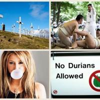Самые странные законы мира