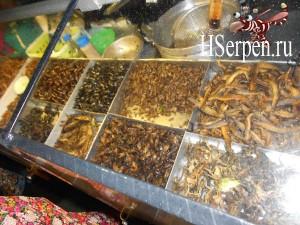 Поесть жареных кузнечиков в Паттайе, Таиланд