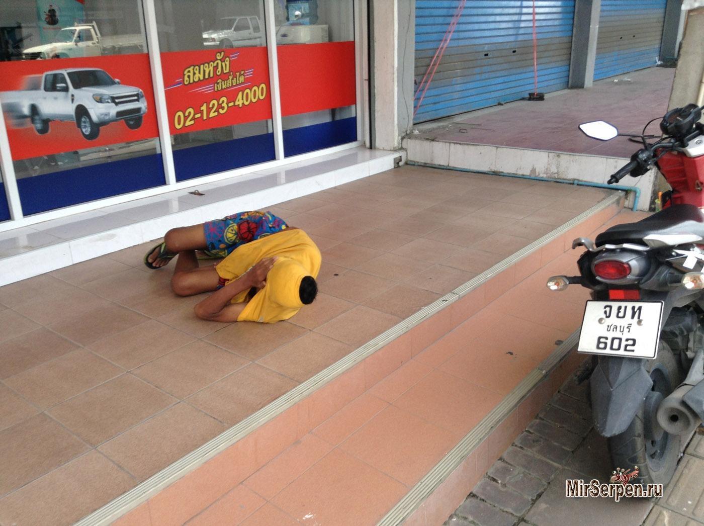 Неизлечимое заболевание - тайская лень