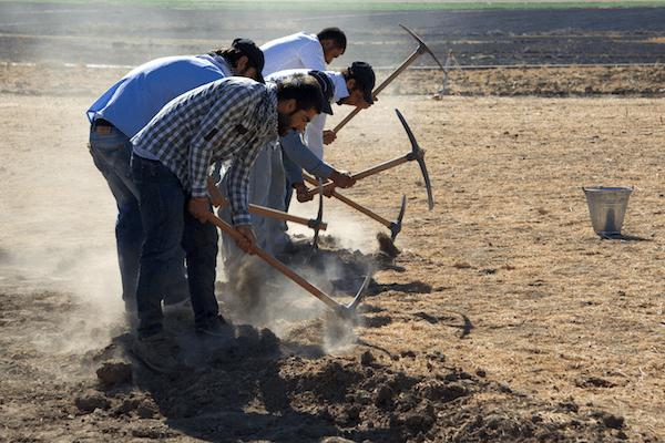 Отпуск в археологической экспедиции