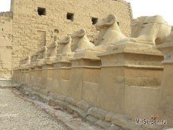 Фото дня: Сфинксы Карнакского храма, Луксор, Египет