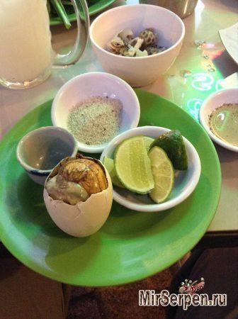 Я реально съел это: Яйца с утиными зародышами во Вьетнаме