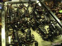 Снова о жареных скорпионах и прочей вкусной гадости