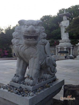 Путешествие в Южную Корею и искусство фотографии