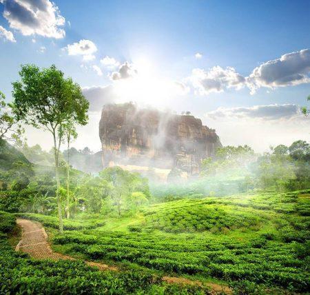 Львиная скала в Сигирии, Шри-Ланка