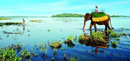 Плюсы и минусы Шри Ланки