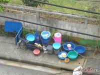 Немного о мытье посуды в уличных кафе Таиланда