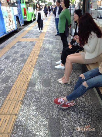 Корейская жизнь с мобильником в руках