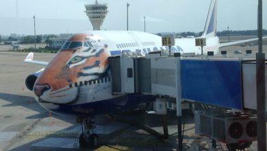 Мини-аптечка в самолет: стоит ли брать с собой?